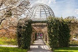 Frühlingsgarten, Jardín Botánico, Múnich, Alemania 2012-04-21, DD 01.JPG