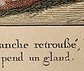 French Eszett.jpg