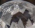 Frozen Bubble (15814301149).jpg