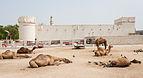 Fuerte Al Koot, Doha, Catar, 2013-08-06, DD 03.JPG