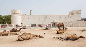 Fuerte Al Koot, Doha, Catar, 2013-08-06, DD 03