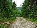 G. Miass, Chelyabinskaya oblast', Russia - panoramio (119).jpg