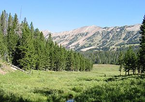 Gallatin National Forest - Image: Gallatin National Forest