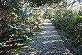 Garden Serralves (4).jpg