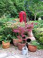 Garden phone box, Fonthill Bishop - geograph.org.uk - 895836.jpg