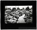 Garden scene in western Canada (S2004-942 LS).jpg