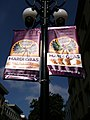 Gaslamp Mardi Gras coming to San Diego.jpg