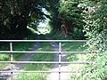Gate and track leading to Ballacrebbin - geograph.org.uk - 513729.jpg