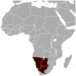 Gemsbok Oryx gazella distribution map.png