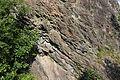 Geotop Steinbruch an der Schanz 13062015 (Foto Hilarmont) (7).JPG