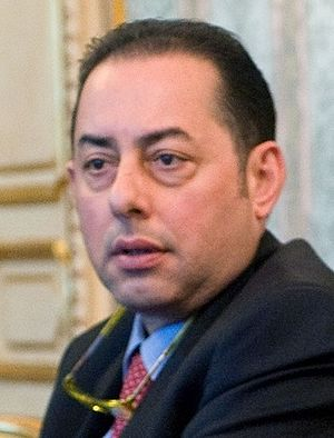 European Parliament election, 2014 - Image: Gianni Pittella 2010