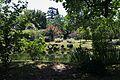 Giardino di Ninfa - vista panoramica.jpg