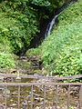 Glengoyne-Distillery-Waterfall-2.JPG