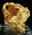 Gold-cat01f.jpg