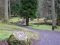 Gortin Glens Forest Park (13) - geograph.org.uk - 1712661.jpg