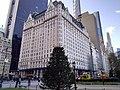 Grand Army Plaza Dec 2020 13.jpg