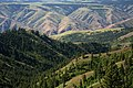 Grande Ronde River, Umatilla National Forest (33724730093).jpg