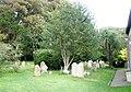 Gravestones behind Bosham church - geograph.org.uk - 928592.jpg