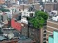 Green City - Flickr - alykat.jpg