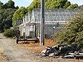 Greenhouses.jpg