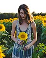 Grinter Sunflower Farms, Lawrence, United States (Unsplash NaFOKMpgPe4).jpg