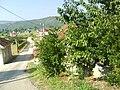 Grude-07-2008-01248.JPG