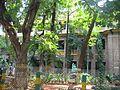Guntur medical campus.jpg