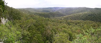 Guy Fawkes River National Park - Guy Fawkes River National Park