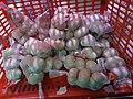 HK SW 上環 Sheung Wan 皇后大道西 Queen's Road West shop QDaMa red plastic basket December 2020 SS2 01.jpg