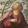 Hans Burgkmair d. Ä. 002-Detail-Half-portrait of John the Evangelist.jpg