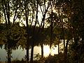 Haro La Rioja y el río Ebro, al atardecer.JPG