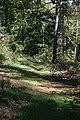 Harz Wanderung Stecklenberg - Hexentanzplatz - Thale - Hochfläche - panoramio.jpg