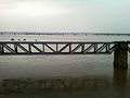 Havelock Old Railway bridge on Godavari River 01.jpg