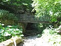 Hawthorn Burn footbridge - geograph.org.uk - 1356836.jpg
