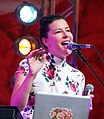 Heimatsound-Festival 2014 Ganes (25).jpg
