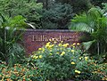 Hillwood Gardens in July (19613962828).jpg