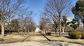 Himeji Castle Senhime Botanic Garden.jpg