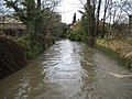 Hogsmill River in Kingston upon Thames - geograph.org.uk - 1179132.jpg
