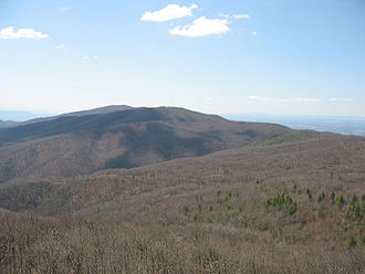 Holston Mountain - Holston High Point as seen from Holston High Knob.