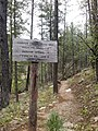 Horton Creek Trail, Payson, Arizona - panoramio (11).jpg