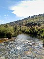 Horton Plains 1.jpg