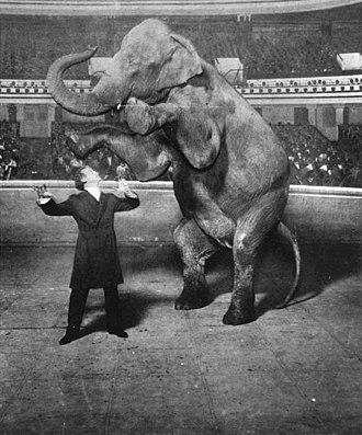 Vaudeville - Harry Houdini and Jennie, the Vanishing Elephant, January 7, 1918
