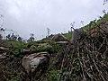 Hpa-An, Myanmar (Burma) - panoramio (196).jpg