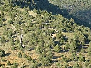 Paridera - Image: Huertahernando paisaje hacia norte ni