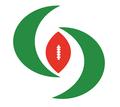 Huracanes Aragón Logo.png