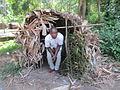 Hute des pygmées Baka.JPG