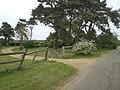 Hyde Park, Barmer - geograph.org.uk - 424571.jpg