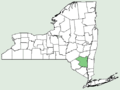 Iberis sempervirens NY-dist-map.png