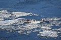 Ice canoeing Quebec 2016 1.JPG