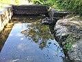Iguape - SP - panoramio (261).jpg